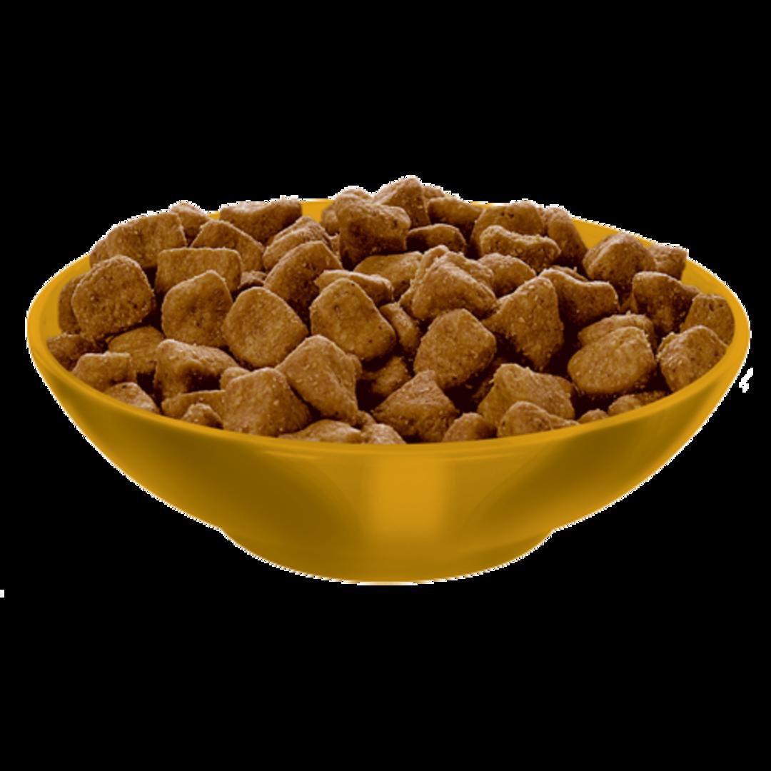 Hill's Science Diet Adult Indoor Cat 2Kg image 2