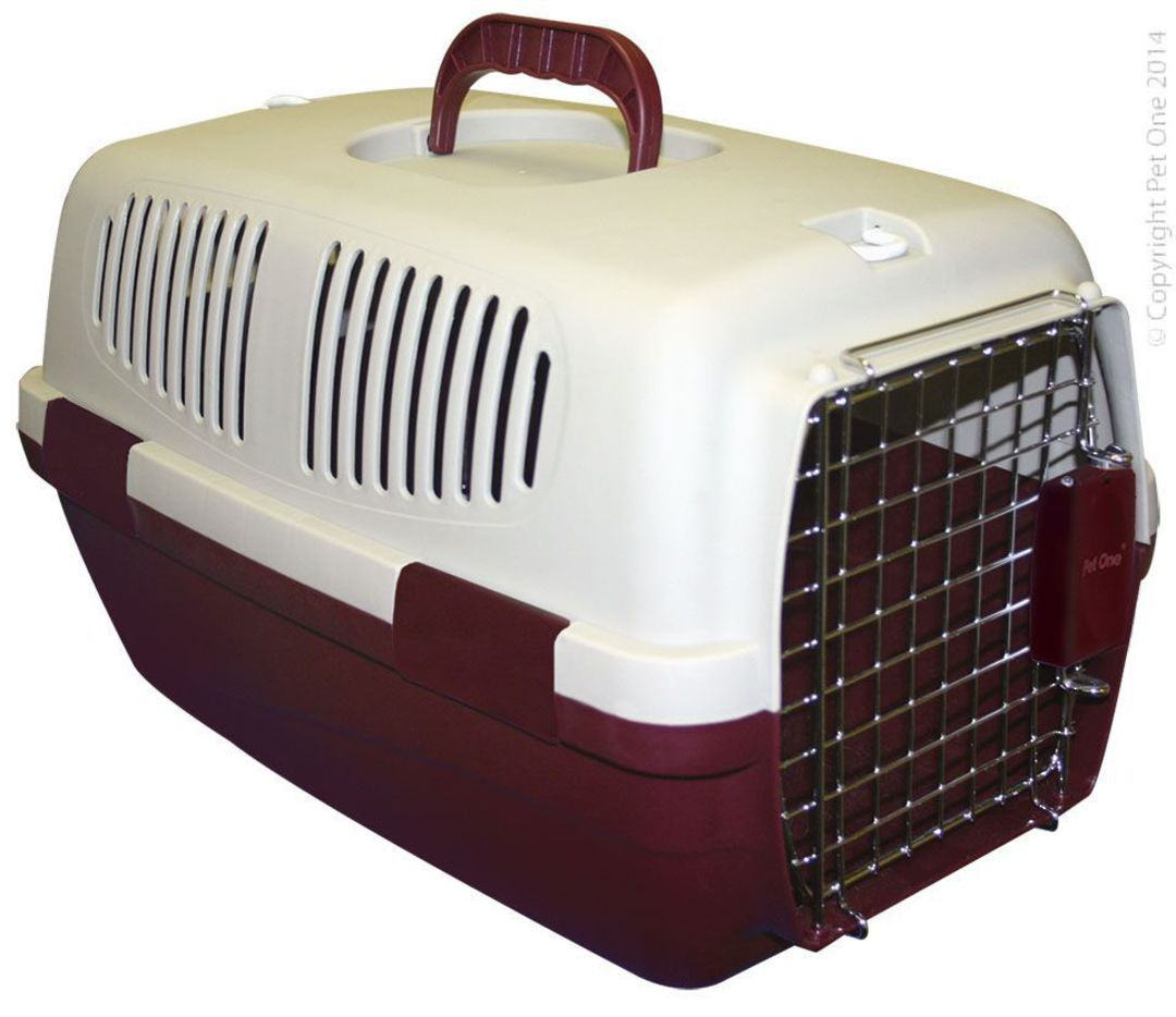 Pet One Carrier Small 48x31x30cm image 0