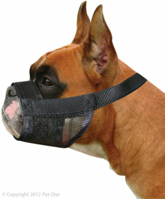 Pet One Adjustable Nylon Muzzle Boxer