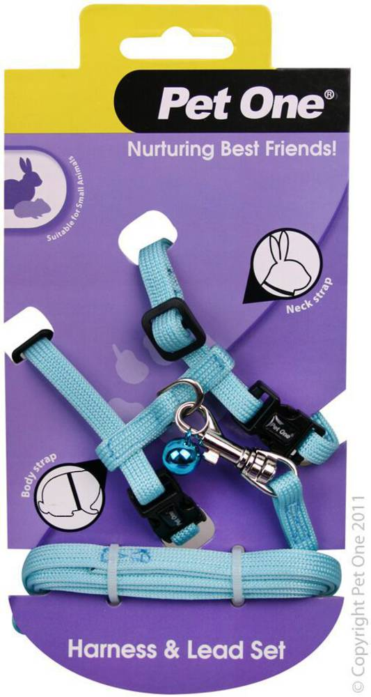 Pet One Leash & Harness for Rabbits and Guinea Pigs Aqua
