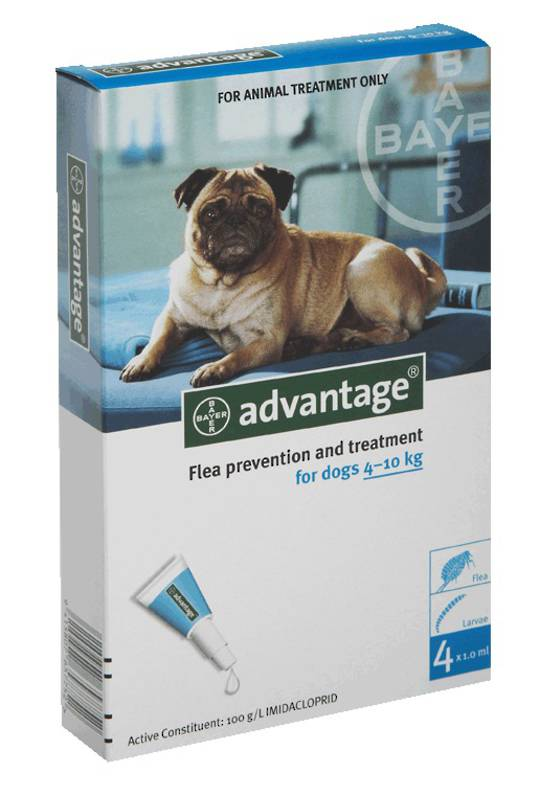 Advantage Spot-on Flea Treatment for Small Dogs  (Turquoise / 4 pippets)
