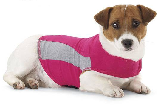 Thundershirt PINK - Polo - XXL