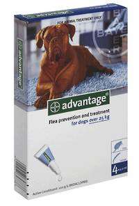 Advantage Spot-on Flea Treatment for Large Dogs (6)